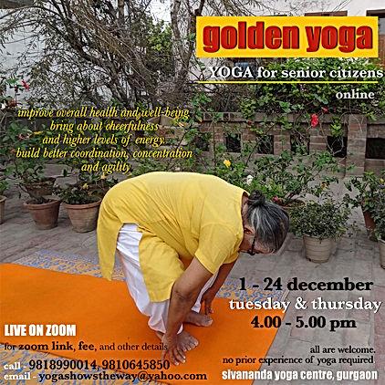 golden yoga december.jpg