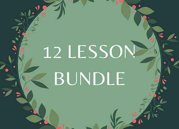 12 Lesson Bundle