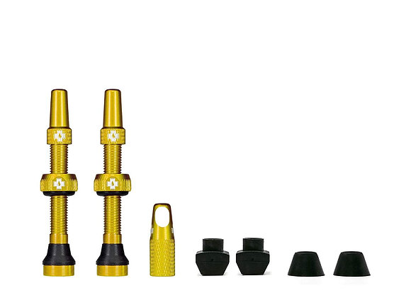 Tubeless Valves | Gold