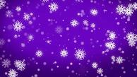 purple-snowflake-6.png