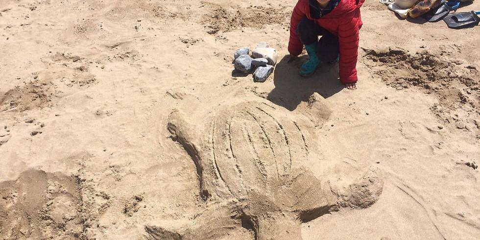 Sea Turtle Workshop