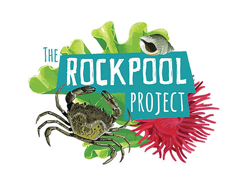 The Rockpool Project