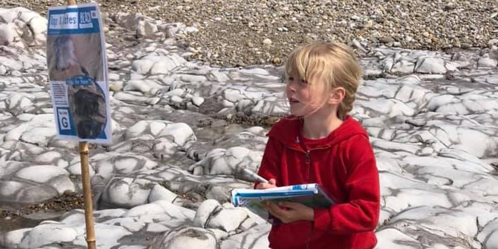 Easter Shark Egg Trail CANCELLED
