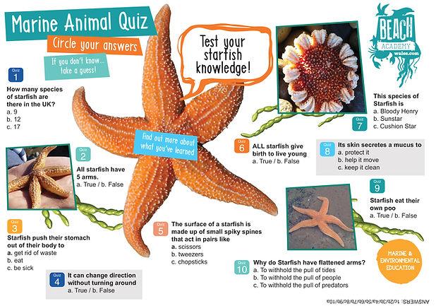 StarfishQuiz.jpg