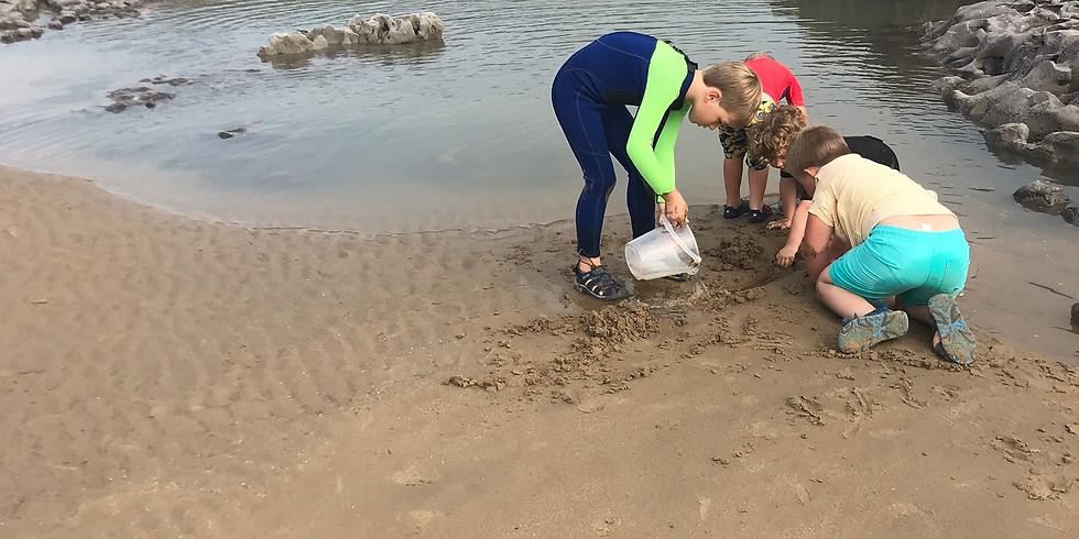 Home Ed Beach Academy - Sand Bandits