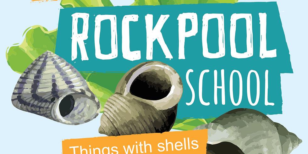 Rockpool School | Week 6 Things with shells