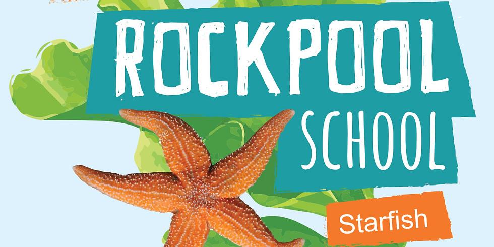 Rockpool School   Week 2 Starfish