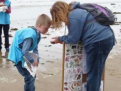 SeaweedSecrets.JPG
