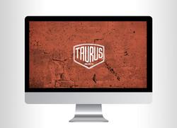 taurus_apresentacao_capa