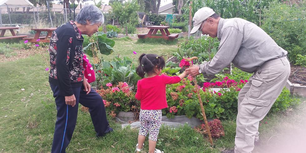 Community Farming Day