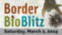 Border BioBlitz 2019.png