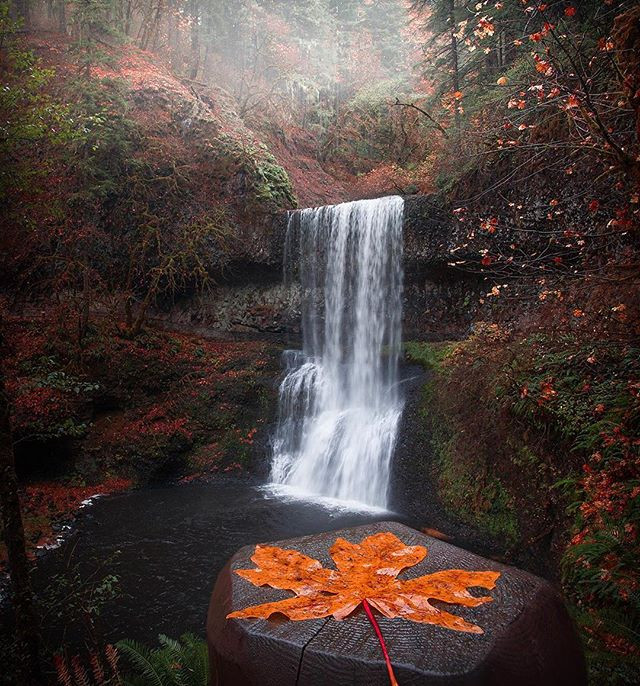 Lower South Falls, Silver Falls State Park Oregon