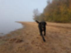 langs le lac st agnan.jpg
