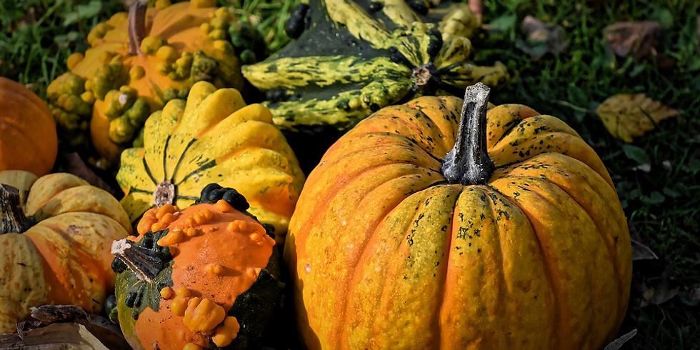 Delectable Pumpkins