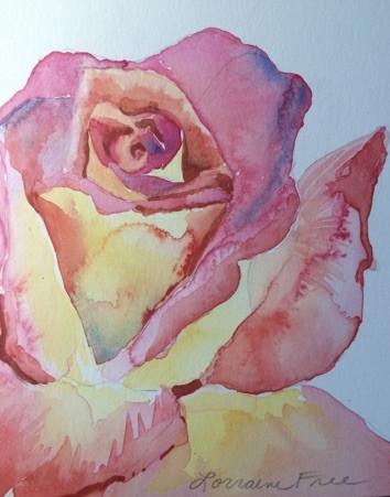 Phipps Rose
