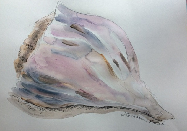 Seashellia