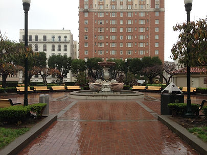 San Francisco Walking Tours - Fern Hill Walking Tours