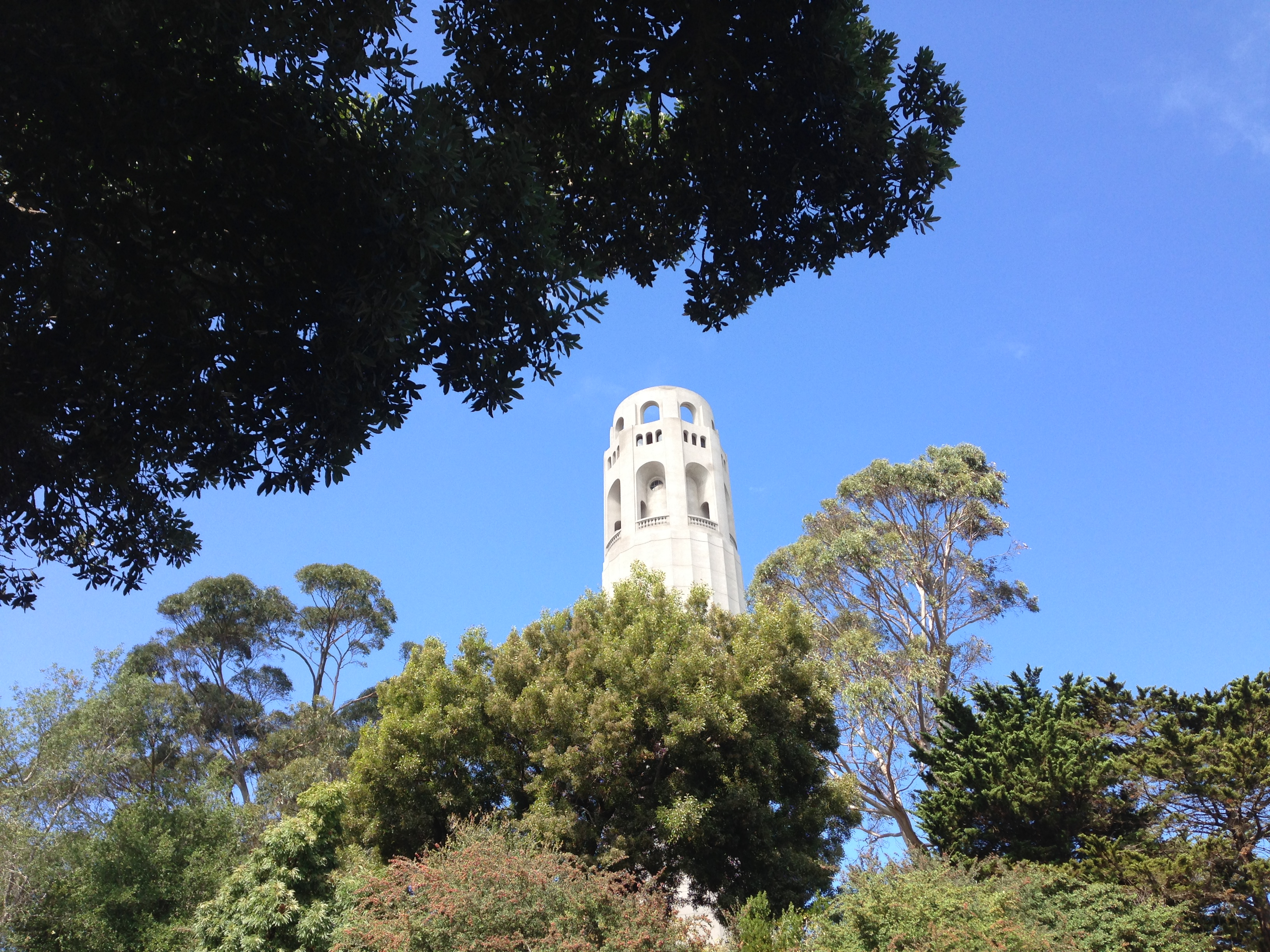Coit Tower San Francisco Fern Hill Walking Tours.JPG