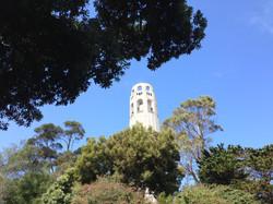 Coit Tower San Francisco Fern Hill Walking Tours.JPG