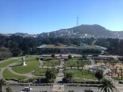 Golden Gate Park - Fern Hill Walking Tours SF.JPG