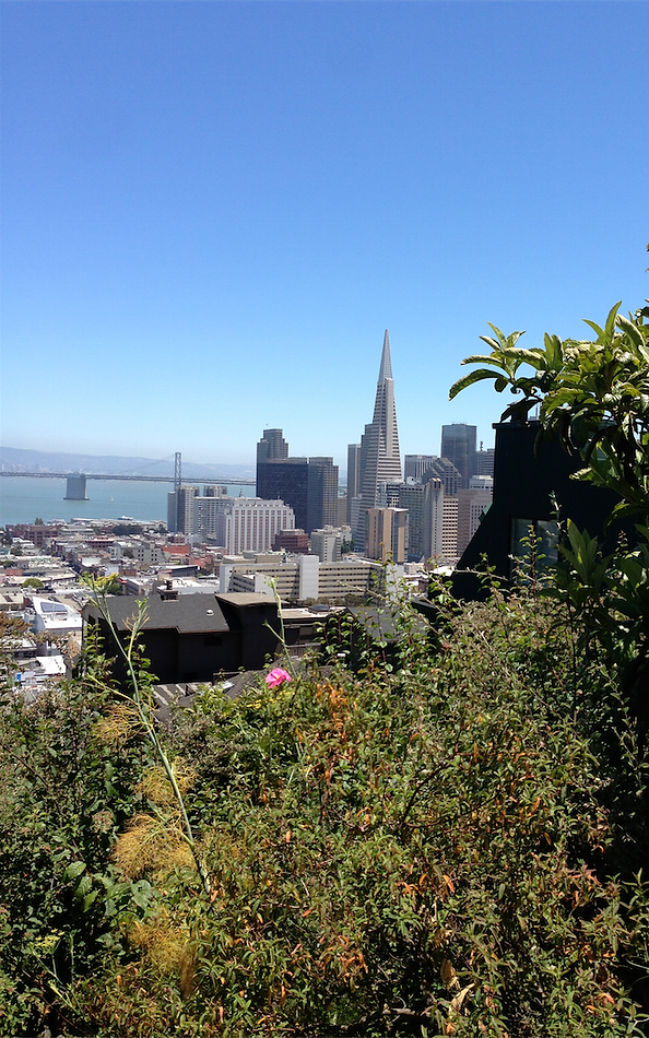 San Francisco Walking Tours - San Francisco History Walking Tours