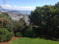 Head of Russian Hill San Francisco Fern Hill Tours.JPG