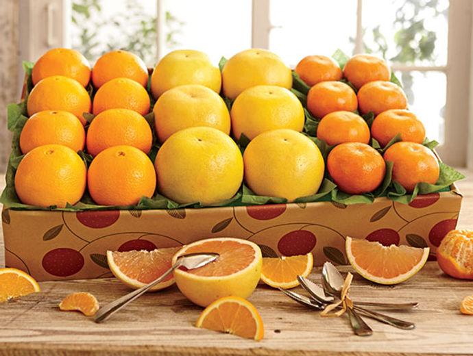 159ns-oranges-grapefruit-tangerines.jpg