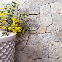 GC Wall Grigio Split Natural