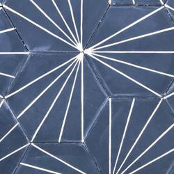 Cement Dandelion Hexagon Navy