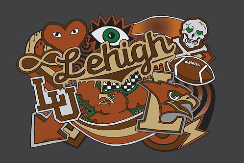 Lehigh Pillow Case