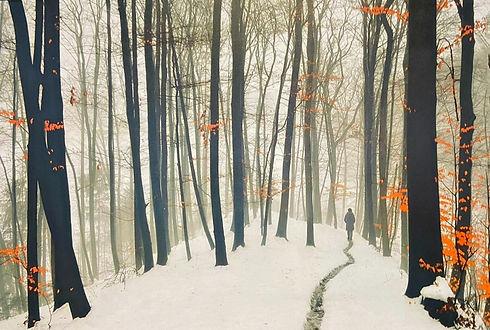Wood land winter 64cm x 93cm .jpg