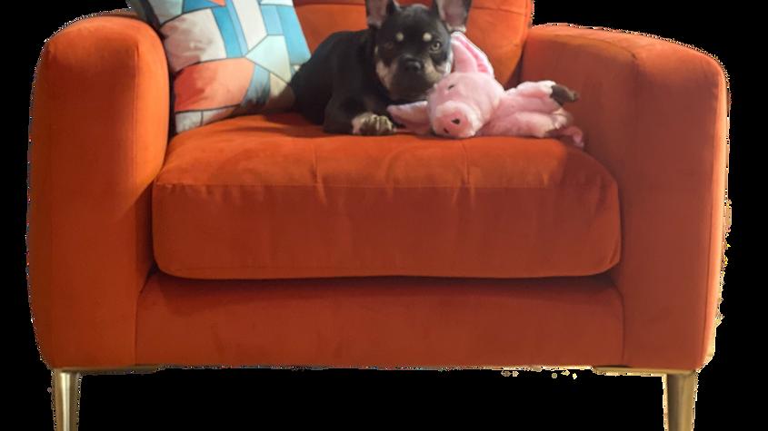 Beau armchair