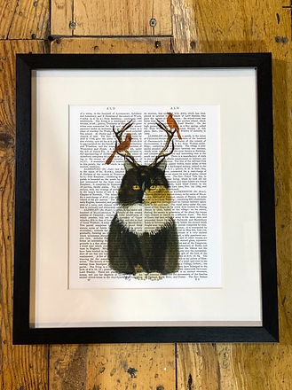 Cat with antlers