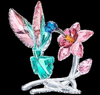 Humming Bird - Crystal Paradise - 546187