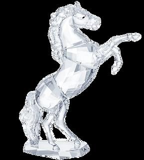 Stallion%205470628_edited.png