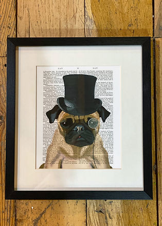Top hat Pug