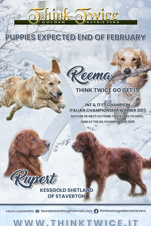 2019-Locandina-Reema-x-Rupert-winter-the