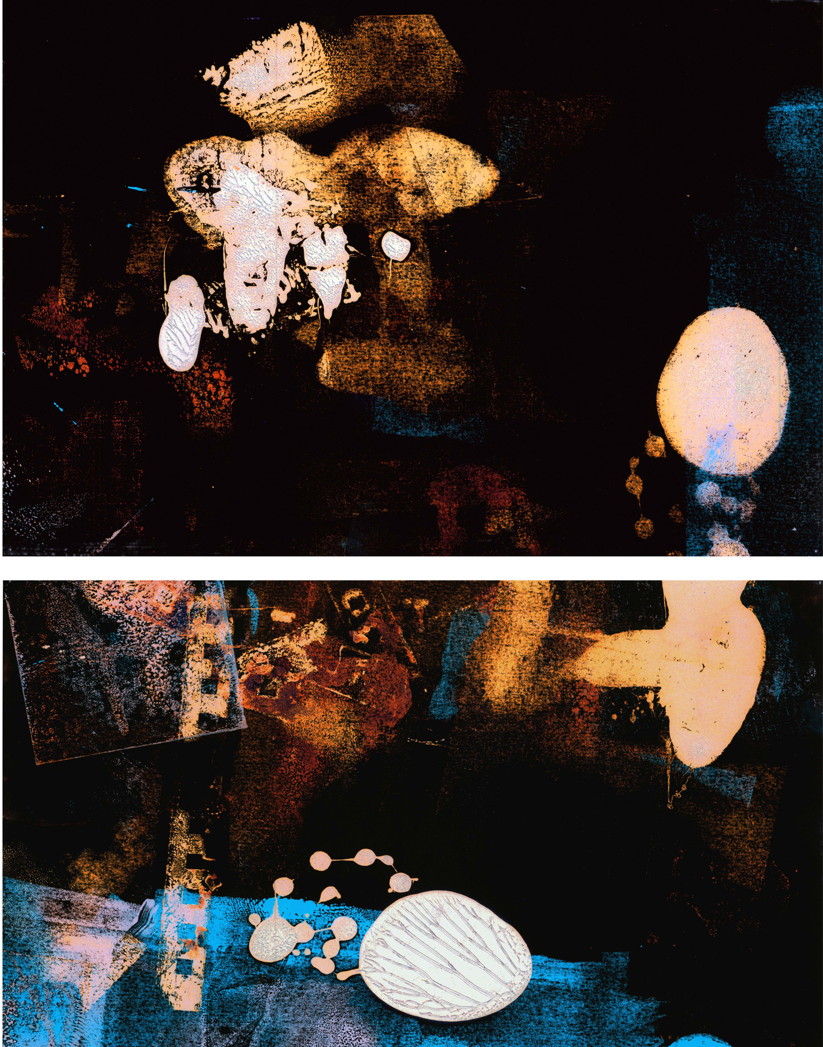 "Swimming in the Night - ""beetle"""