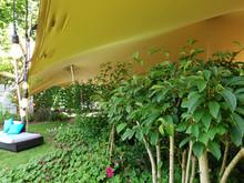 20x15m stretch tent 60th