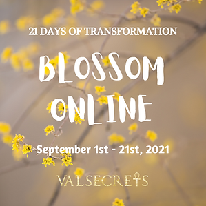 Blossom Online (6).png