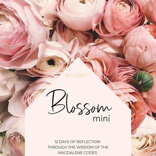 Blossom Mini E-Book