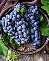 Uvas, simbolo de prosperidade