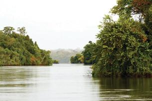 Deputado quer incluir o Festival de Pesca de Juruena no calendário oficial de MT