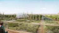 Paris inaugura maior fazenda urbana em telhado com 14 mil m²