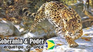 Você Sabia que o Arquétipo  Real do Brasil é a Onça?