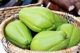 Saúde em Foco: Chuchu e suas propriedades medicinais