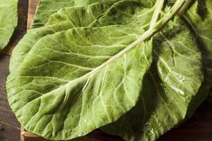 Saúde em Foco: Couve e suas propriedades medicinais