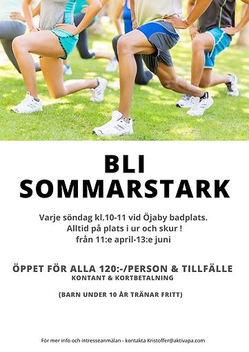 Bli Sommarstark.png