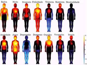 Visualize onde cada emoção regula a temperatura do corpo humano