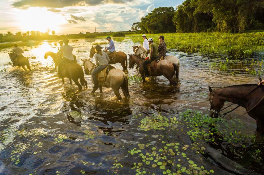 Foto Pantanal - Ciclo Vivo